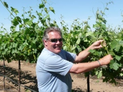 Mike Manna tending the vines